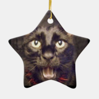 The Most Handsome Star Ornament