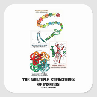 The Multiple Structures Of Protein (Biology) Square Sticker