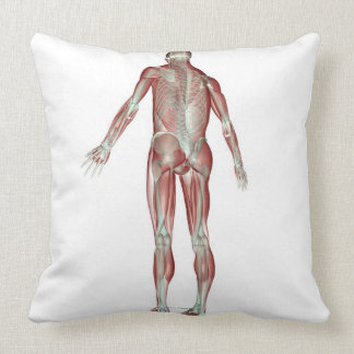 The Musculoskeletal System 5 Throw Pillows