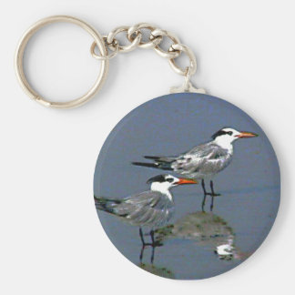 The MUSEUM Artist Series jGibney Birds2CocoaBeach1 Keychains