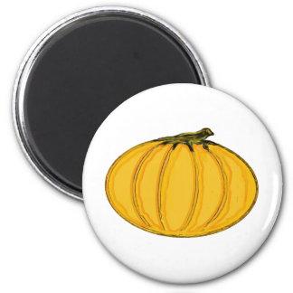 The MUSEUM Artist Series jGibney Pumpkin7tc100 Magnets