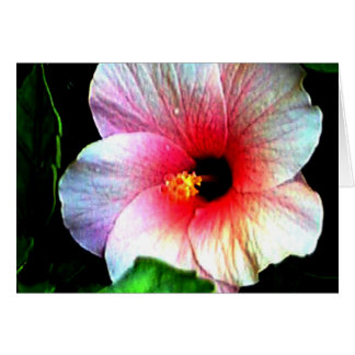 The MUSEUM Artitst Series jGibney Hibiscus72 Greeting Card
