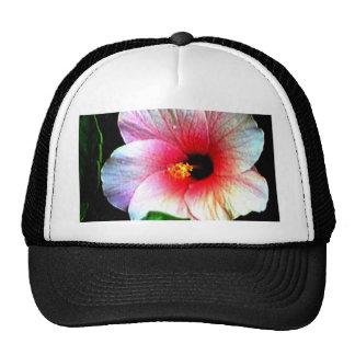 The MUSEUM Artitst Series jGibney Hibiscus72 Trucker Hats