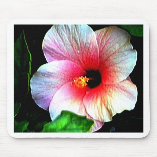 The MUSEUM Artitst Series jGibney Hibiscus72 Mouse Mats