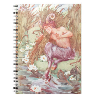 The Myth of Pan Notebooks