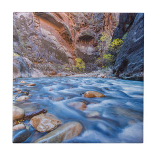 The Narrows Of The Virgin River In Autumn 3 Ceramic Tiles