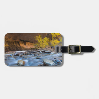 The Narrows Of The Virgin River In Autumn Bag Tags