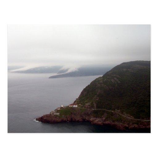The Narrows, Signal Hill Postcard