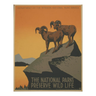 The National Parks Poster