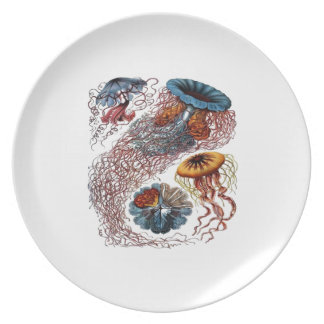 THE NEW SCHOOL DINNER PLATES