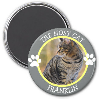 THE NOSY CAT: Humorous  Pawprints Photo Button 3 Inch Round Magnet