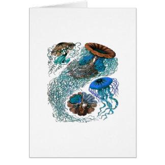 THE OCEAN PULSE CARD