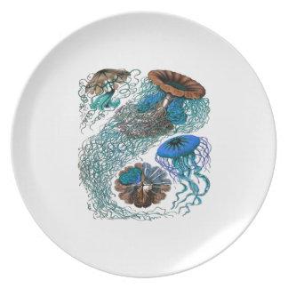 THE OCEAN PULSE PLATE