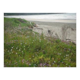 the old beach sand look photo print