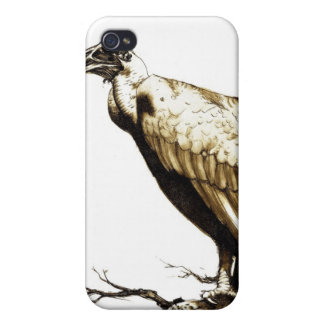 The Old Buzzard iPhone 4/4S Cases