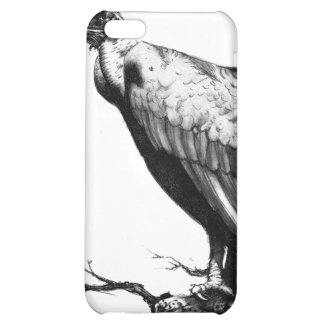 The Old Buzzard iPhone 5C Cases