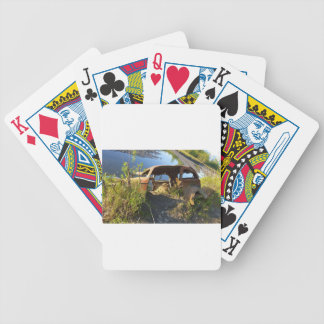 The Old Cars of Eklutna Tailrace Bicycle Playing Cards