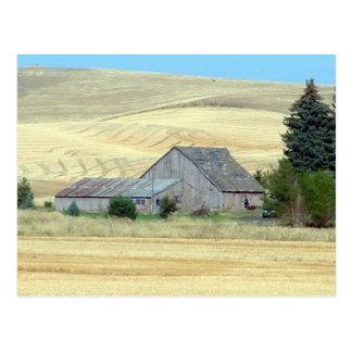 The Old Homestead Postcard