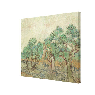The Olive Orchard Canvas Print