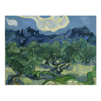 The Olive Trees by Vincent Van Gogh Post Card