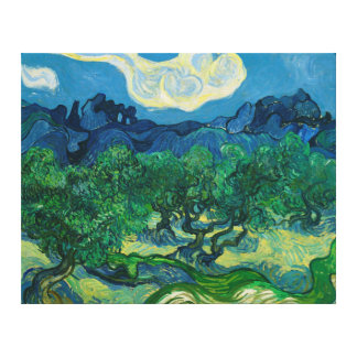 The Olive Trees with Alpilles Vincent van Gogh Canvas Print