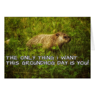 The only thing I want this Groundhog Day card