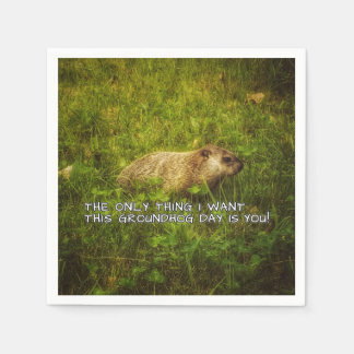 The only thing I want this Groundhog Day napkins