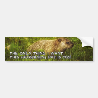 The only thing I want this Groundhog Day sticker