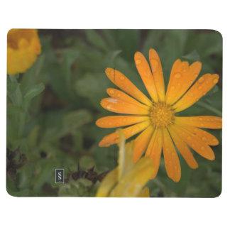 The Orange Flower Journals