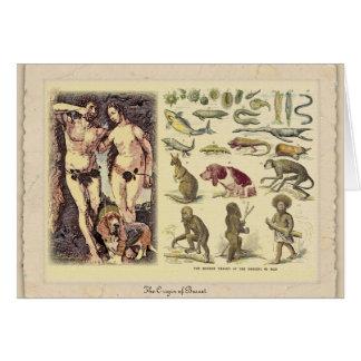 The Origin of Basset Card