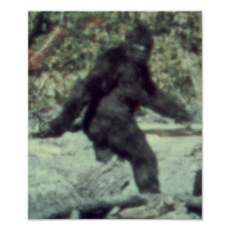 THE ORIGINAL 1967 BIGFOOT SASQUATCH PHOTO POSTERS