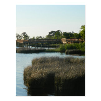 The Outer Banks Sound Postcard