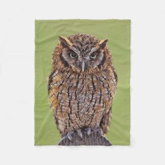 The Owl Blanket