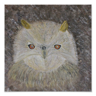 The Owls Eyes Posters