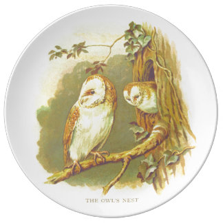 The owl's nest vintage plate