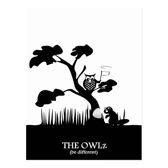 The Owlz - owl and beaver Postcard