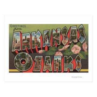 The Ozarks, Arkansas - Large Letter Scenes Postcard