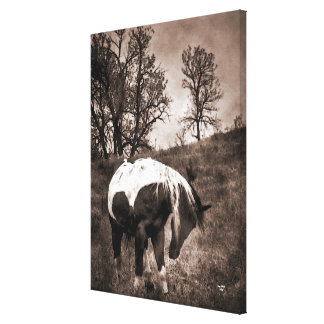 The Paint Canvas Print
