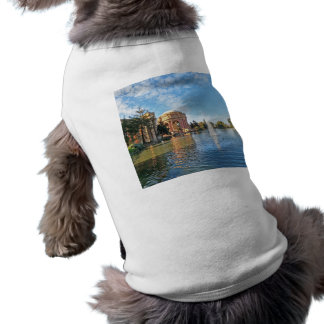 The Palace of Fine Arts California Shirt