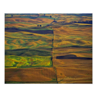 The Palouse from Steptoe Butte, Colfax, Poster