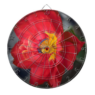 The Parrot Dartboard
