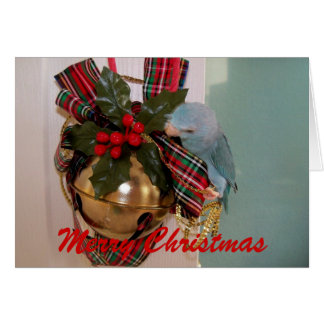 The Parrotlets Merry Christmas Greeting Card