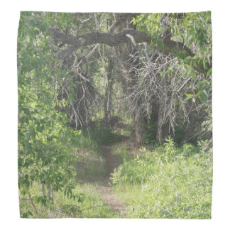 The Path Bandana