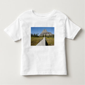 The pathway to the view of Hidden Lake Toddler T-shirt