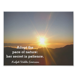 The Patience of Nature - Emerson quote - print
