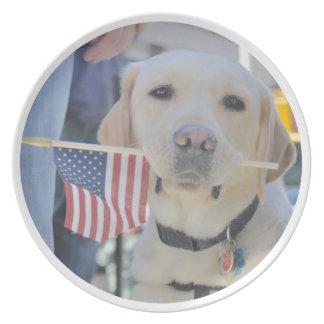 The Patriotic Dog Plates