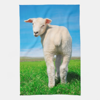 The peaceful sheep kitchen towel