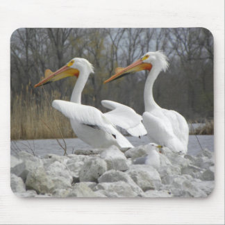 The Pelican Beak Mouse Pad