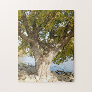 The Perfect Climbing Tree Jigsaw Puzzle