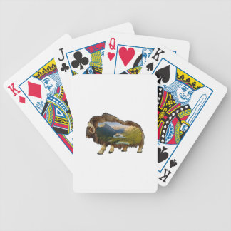 The Picture Within Bicycle Playing Cards